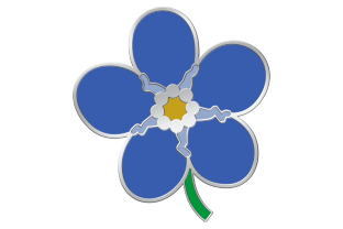 forget me not pins