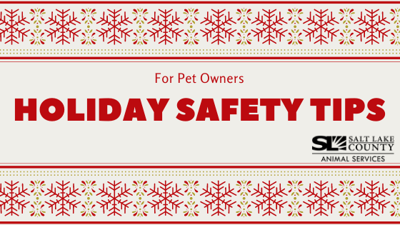 pet safety holidays