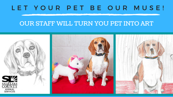 Let Your Pet be our Muse