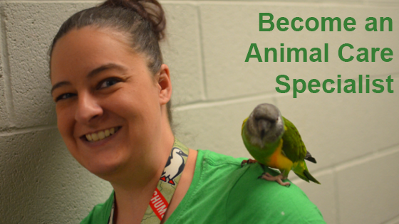 animal_care_specialist_blog