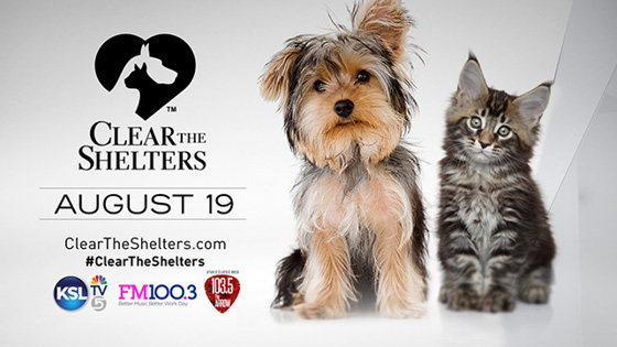 clear_the_shelters