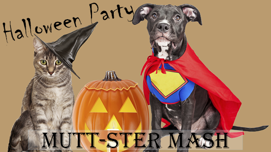 muttster_mash_blog