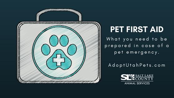pet_first_aide_2018