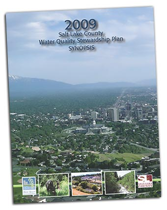 2009 Plan cover