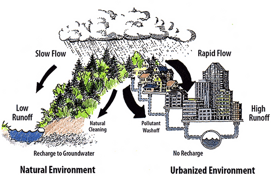 Urban vs natural streamflow