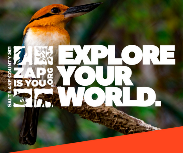 Explore Your World- Tracy Aviary