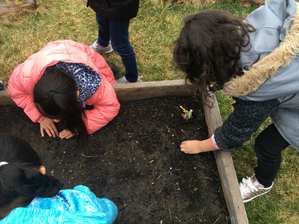 school programs at wasatch community gardens
